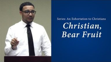 Christian, Bear Fruit – Brandon Davison